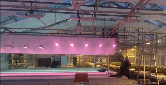 Forsok med LED pa Gjennestad Gartnerskole Kopi red