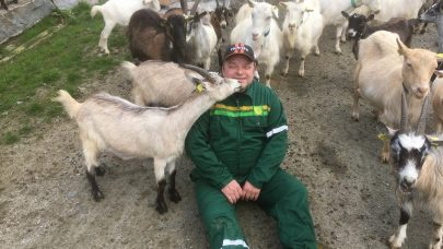 3 Saman med geitene